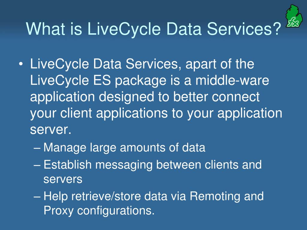 What is LiveCycle Data Services?