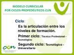 modelo curricular por ciclos proped uticos cun11