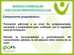 modelo curricular por ciclos proped uticos cun14