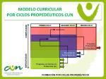 modelo curricular por ciclos proped uticos cun15