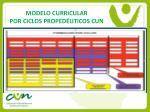 modelo curricular por ciclos proped uticos cun16