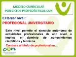 modelo curricular por ciclos proped uticos cun6