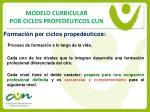 modelo curricular por ciclos proped uticos cun9