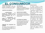 el consumidor1
