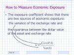 how to measure economic exposure3