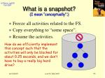 what is a snapshot i mean conceptually