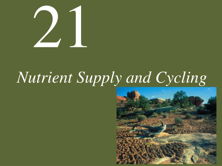nutrient supply and cycling n.