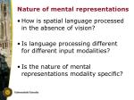 nature of mental representations
