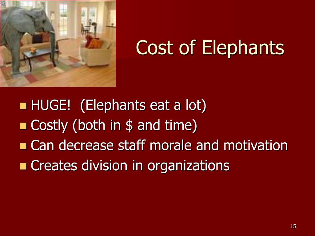 Cost of Elephants