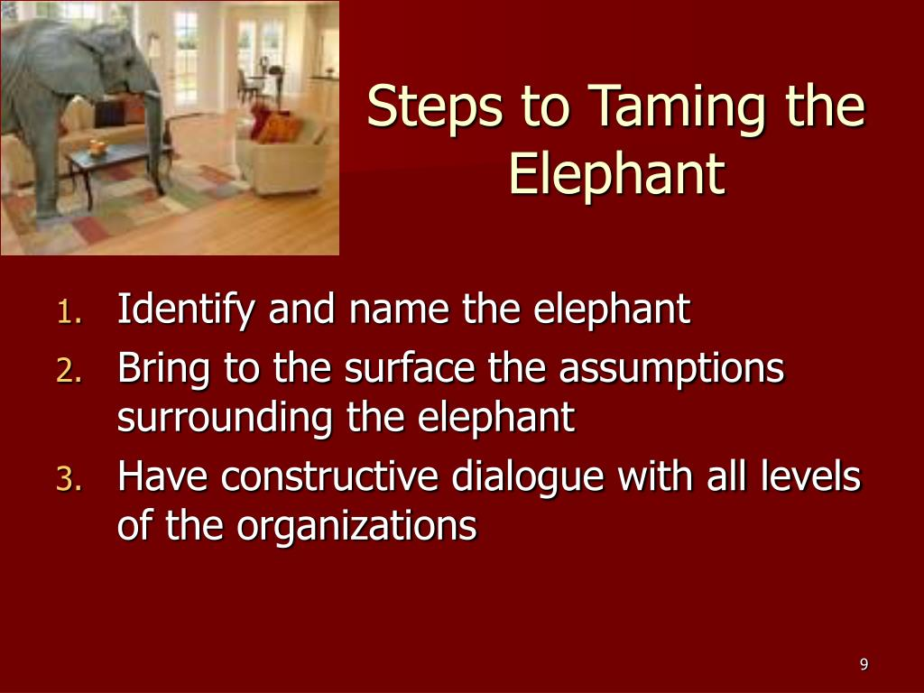 Steps to Taming the Elephant