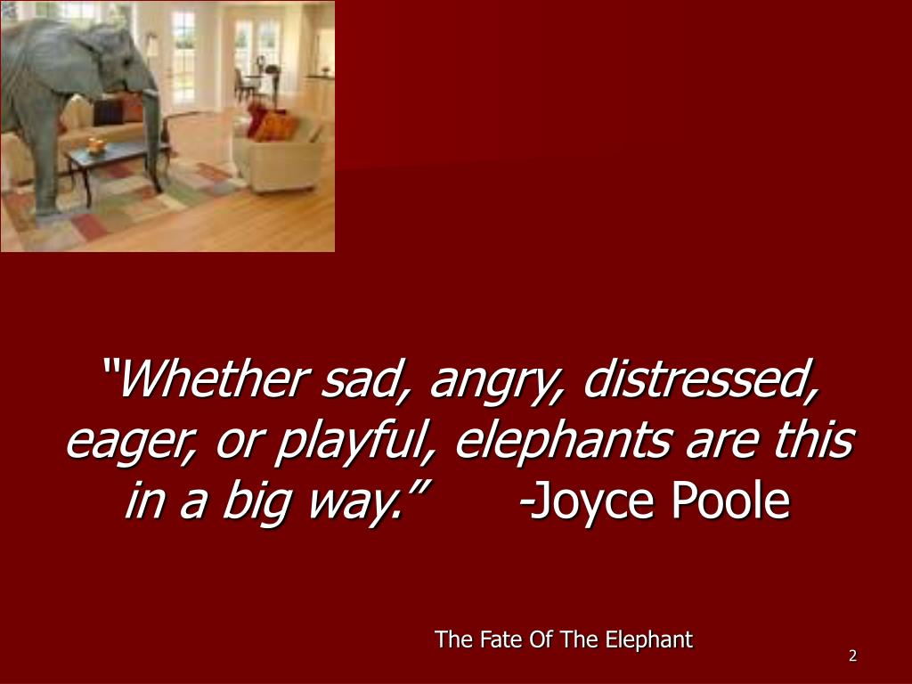 """""""Whether sad, angry, distressed, eager, or playful, elephants are this in a big way.""""      -"""