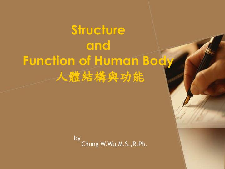 structure and function of human body n.
