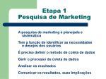 etapa 1 pesquisa de marketing