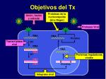 objetivos del tx