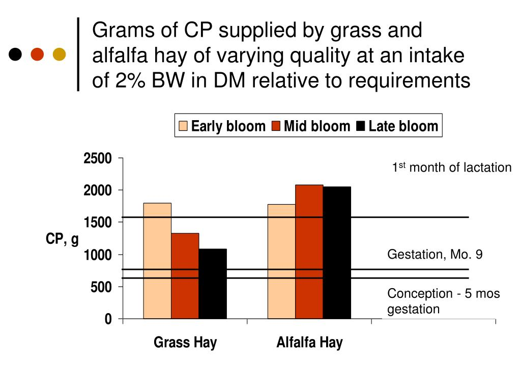 Grams of CP supplied by grass and alfalfa hay of varying quality at an intake of 2% BW in DM relative to requirements