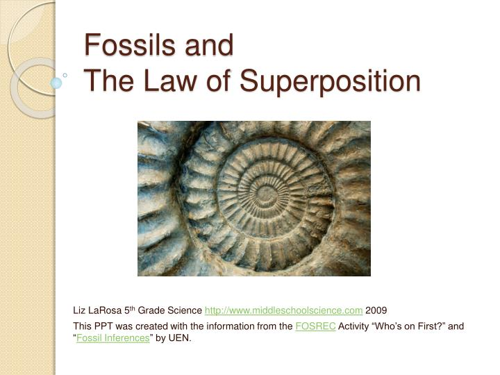 fossils and the law of superposition n.