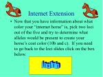 internet extension