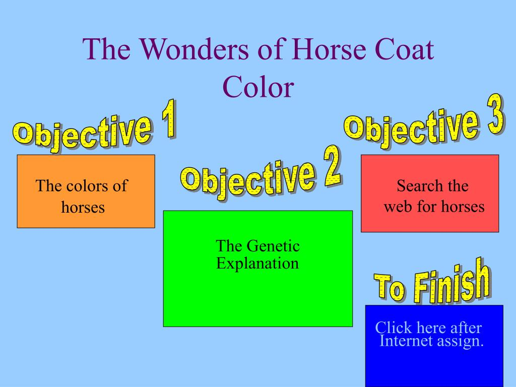 the wonders of horse coat color l.