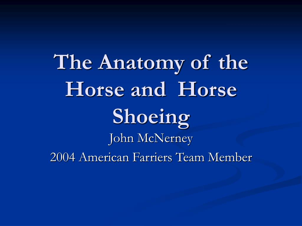 the anatomy of the horse and horse shoeing l.