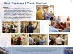 gaps roadmaps vision overview