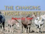 the changing horse market