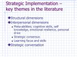 strategic implementation key themes in the literature1