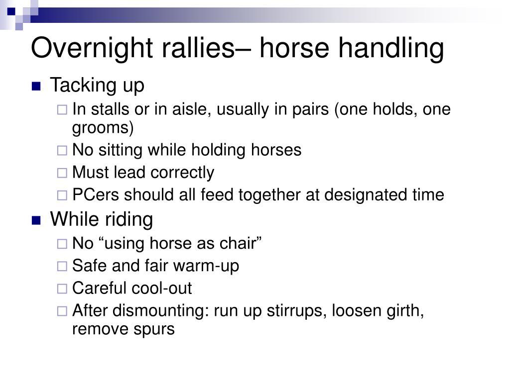 Overnight rallies– horse handling