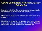 centro coordinador regional uruguay estrategias