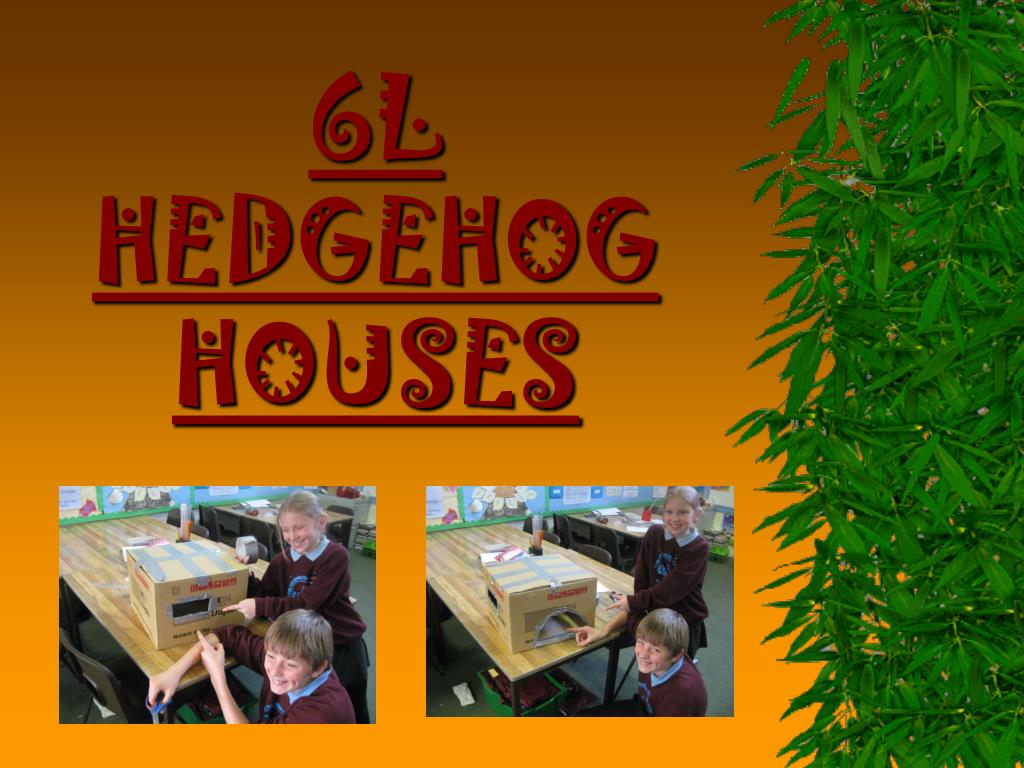 6l hedgehog houses l.