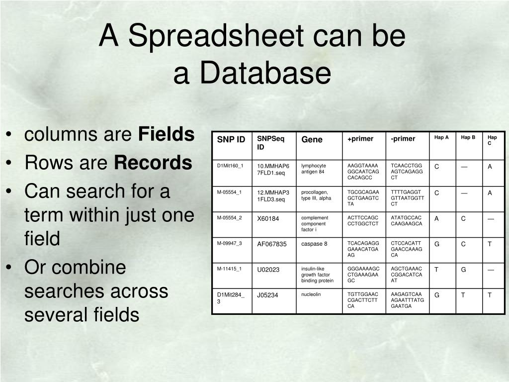 A Spreadsheet can be