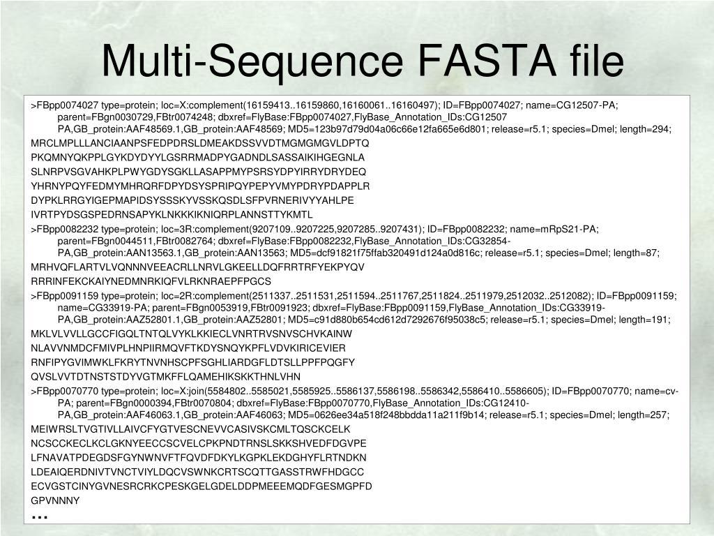 Multi-Sequence FASTA file
