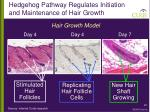 hedgehog pathway regulates initiation and maintenance of hair growth