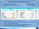 market opportunities and characteristics
