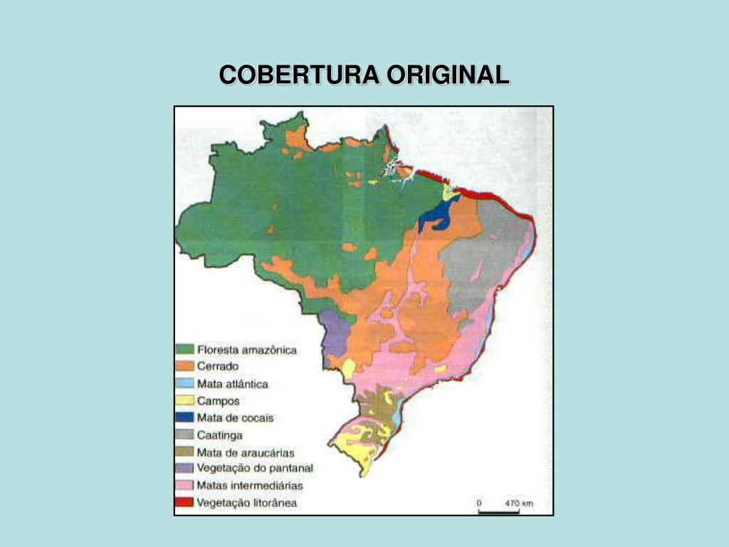 COBERTURA ORIGINAL