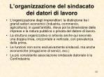 l organizzazione del sindacato dei datori di lavoro