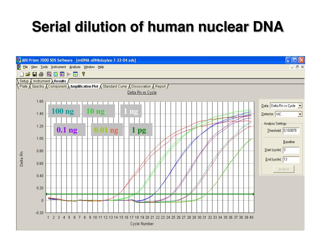 Serial dilution of human nuclear DNA