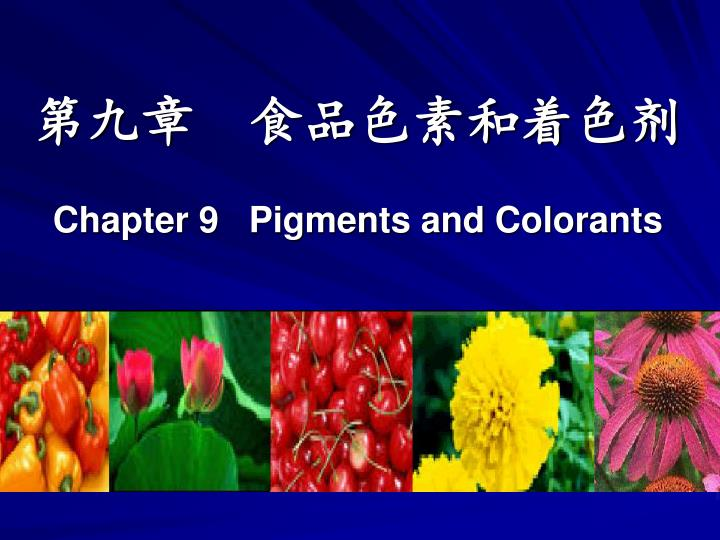 chapter 9 pigments and colorants n.