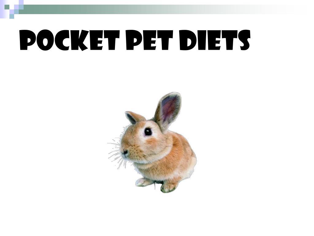 POCKET PET DIETS