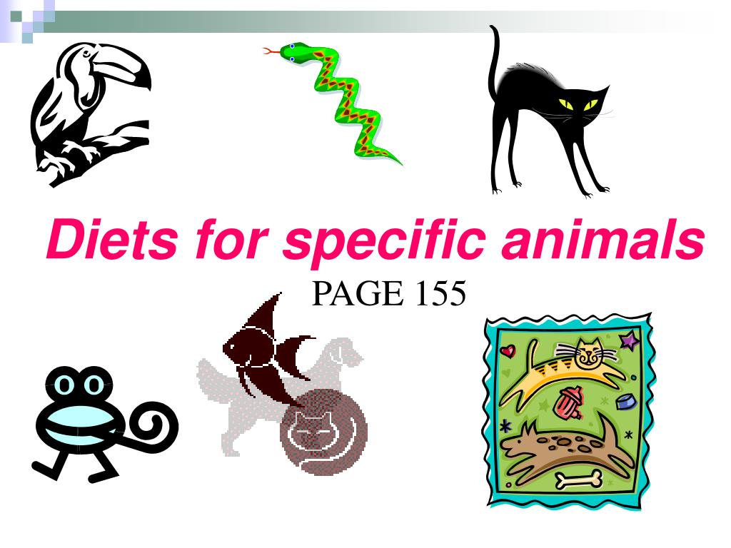 Diets for specific animals
