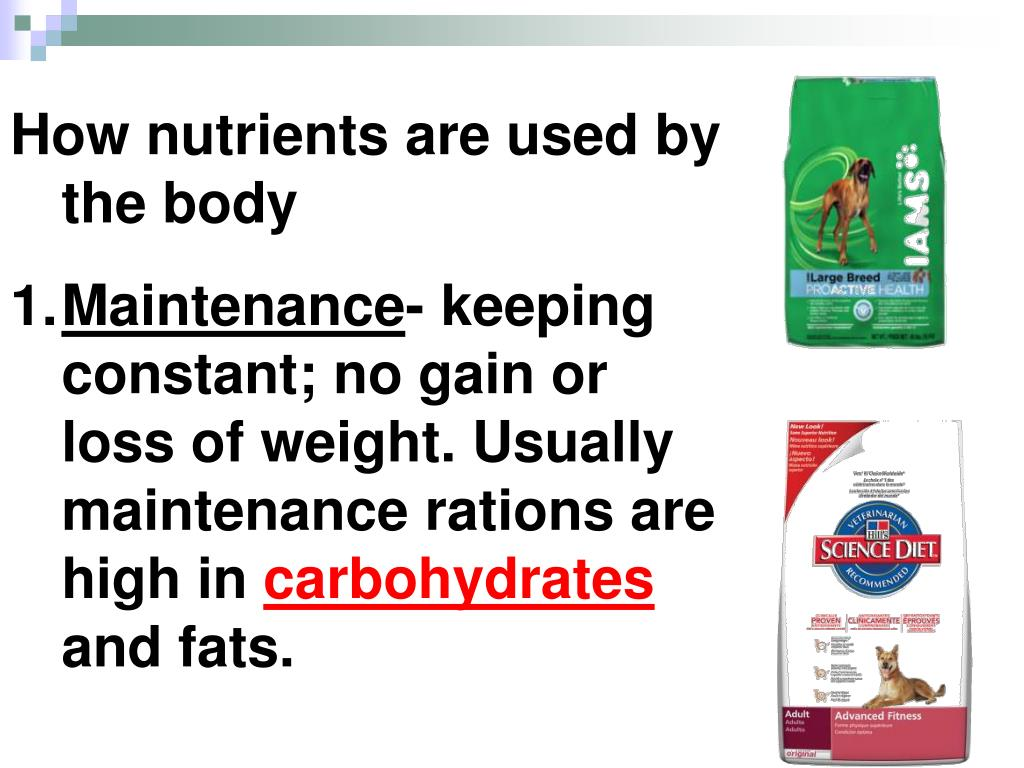 How nutrients are used by the body