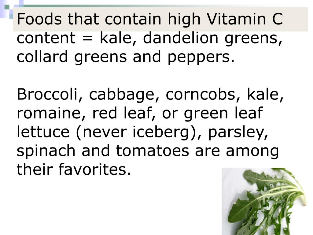 Foods that contain high Vitamin C content = kale, dandelion greens, collard greens and peppers.