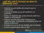 qu incluye el estudio de impacto ambiental eia