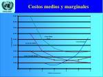 costos medios y marginales