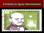 a tribute to ignaz semmelweis