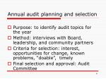 annual audit planning and selection