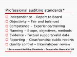 professional auditing standards