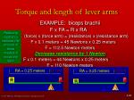 torque and length of lever arms12