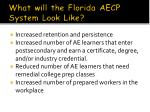 what will the florida aecp system look like
