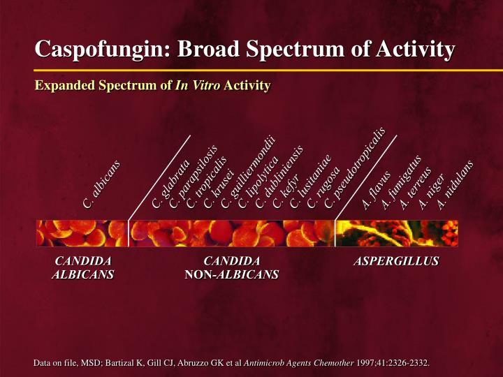 Caspofungin: Broad Spectrum of Activity