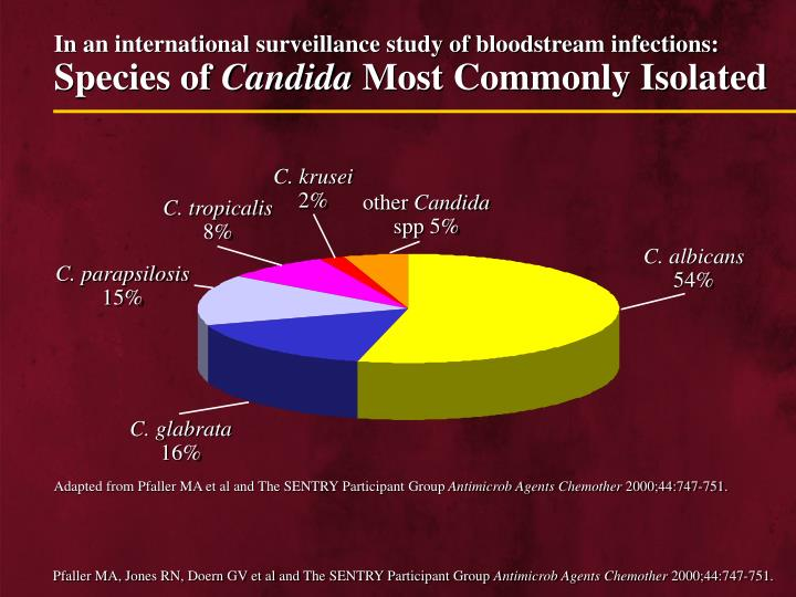 In an international surveillance study of bloodstream infections: